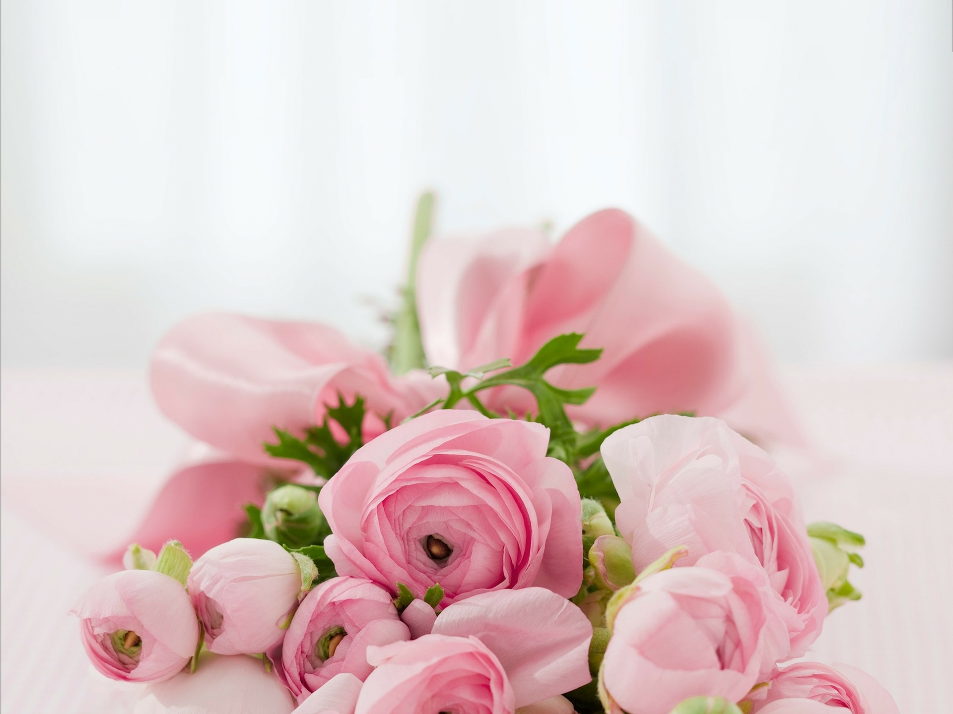 pink roses bouquet-142876_1920