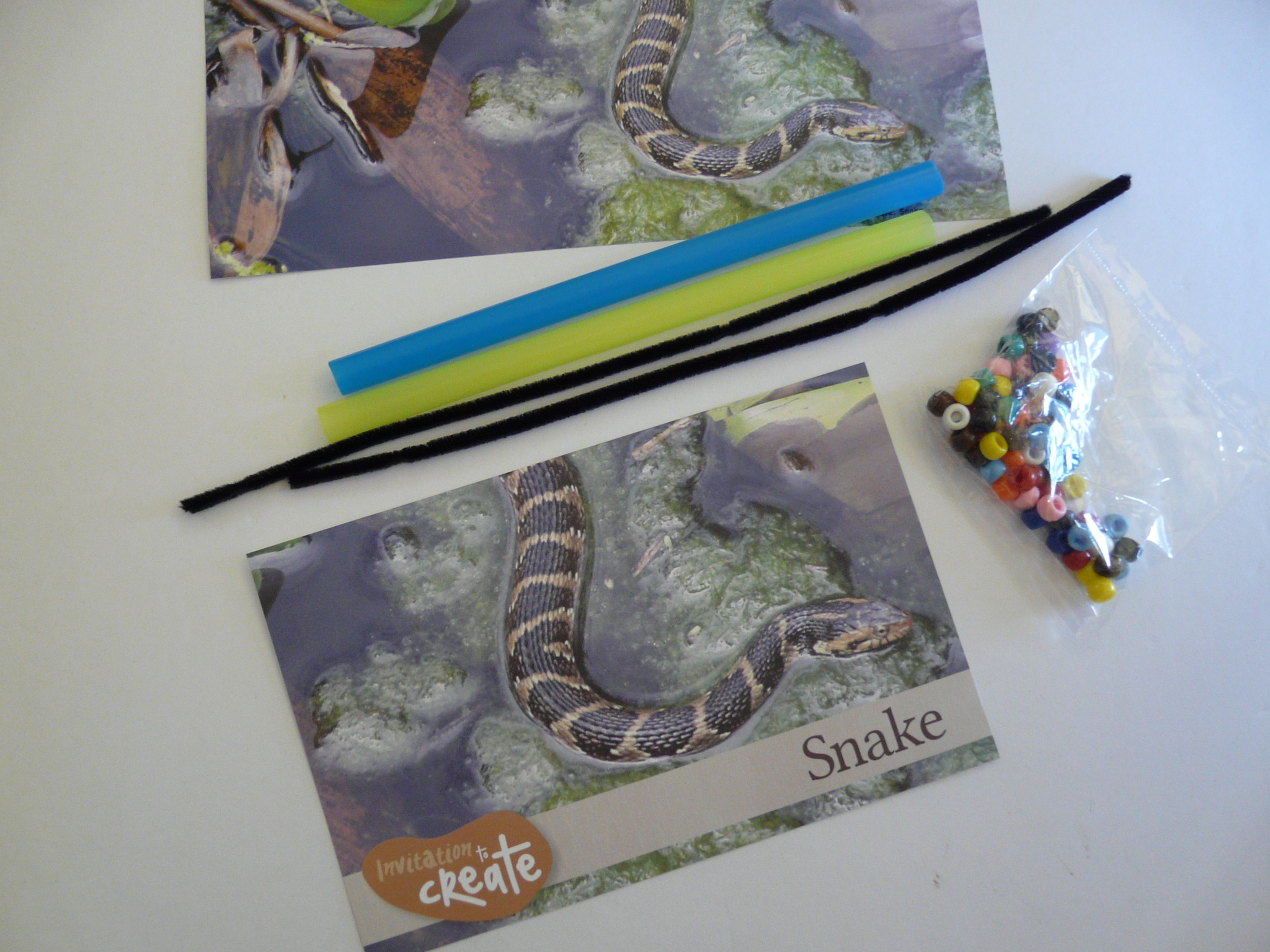 Snake Inspiration Photo, Pipecleaners, Straws and Beads by Haydee Montemayor from Love and Treasure Blog that you can find at www.loveandtreasure.com P1210020